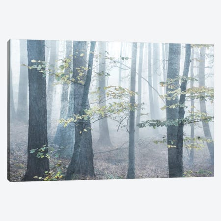 Chalky Misty Canvas Print #IWE30} by Irene Weisz Canvas Artwork