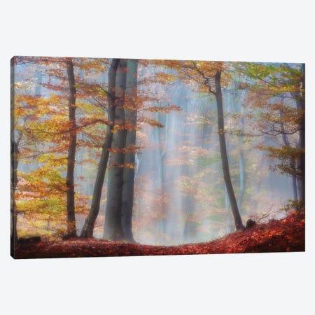 Always Magic Around Canvas Print #IWE36} by Irene Weisz Canvas Art Print