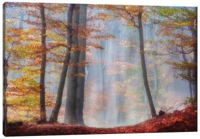Always Magic Around Canvas Art Print