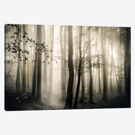 Light is Always There Canvas Print #IWE40} by Irene Weisz Art Print