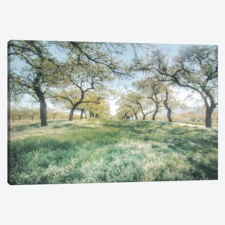 Charming Spring Mood 3-Piece Canvas #IWE45} by Irene Weisz Canvas Artwork