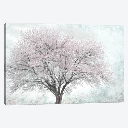 A Feel of Spring I Canvas Print #IWE50} by Irene Weisz Canvas Wall Art