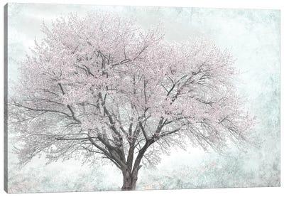 A Feel of Spring I Canvas Art Print