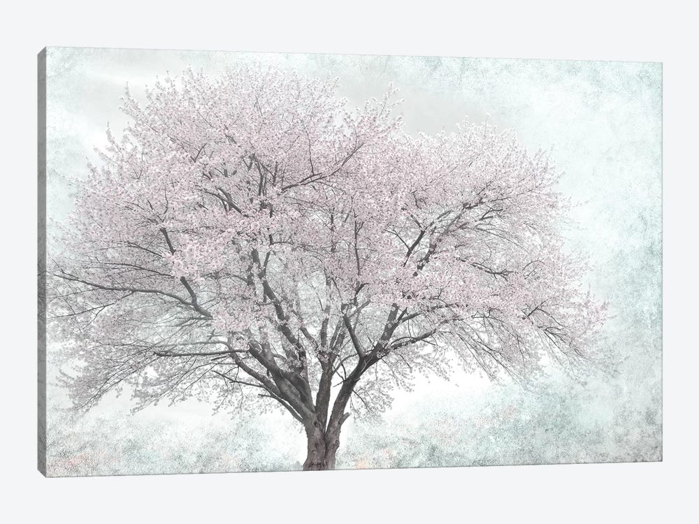 A Feel of Spring I by Irene Weisz 1-piece Canvas Artwork