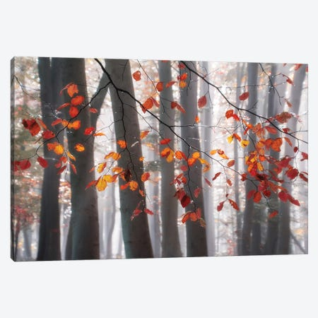 Falling Moments Canvas Print #IWE52} by Irene Weisz Canvas Wall Art