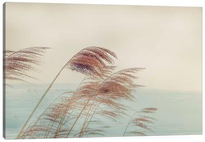 Windy I Canvas Art Print