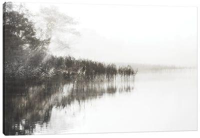 Taupe Misty Canvas Art Print