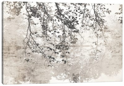 Taupe Soft Reflection Canvas Art Print
