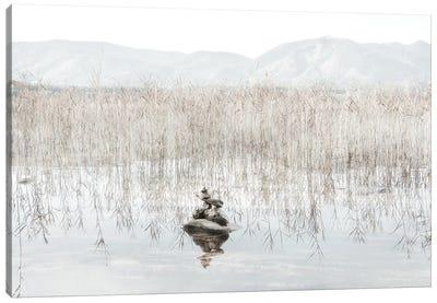 Taupe Zen Canvas Art Print