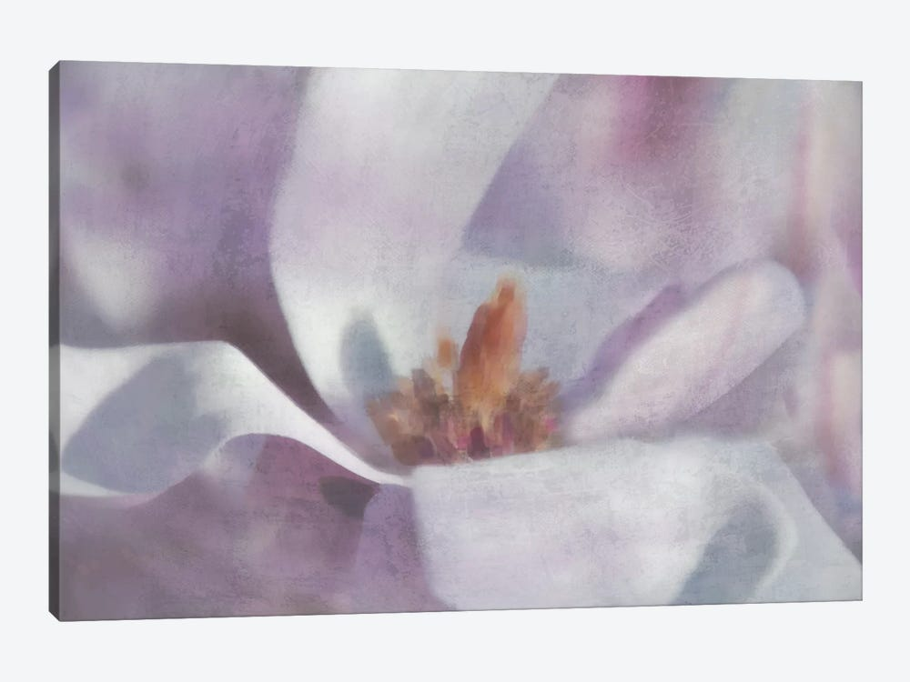 Magnolia Melody I by Irene Weisz 1-piece Canvas Print