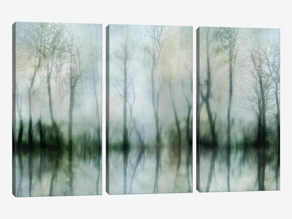 Mirrored Pond by Irene Weisz 3-piece Canvas Print