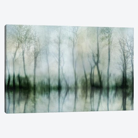Mirrored Pond Canvas Print #IWE8} by Irene Weisz Canvas Art Print