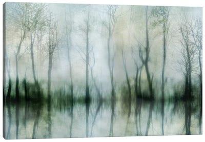 Mirrored Pond Canvas Art Print