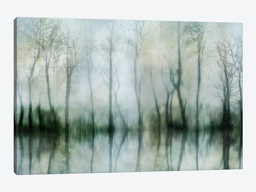 Mirrored Pond by Irene Weisz 1-piece Canvas Print