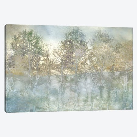 River Reflection Canvas Print #IWE9} by Irene Weisz Canvas Print