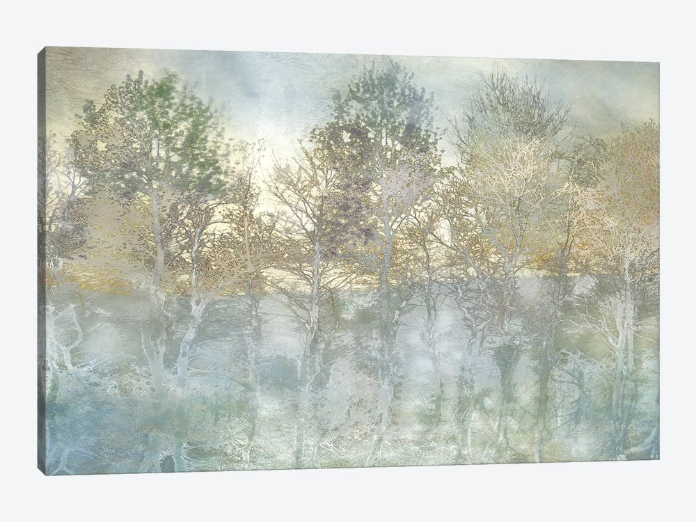 River Reflection by Irene Weisz 1-piece Canvas Artwork