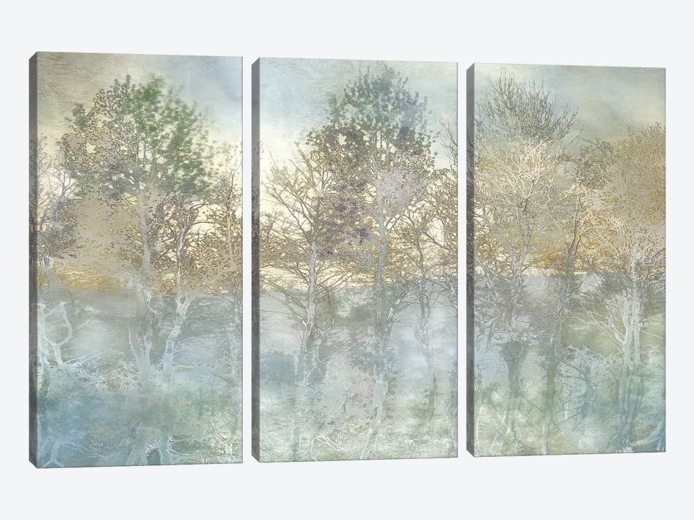 River Reflection by Irene Weisz 3-piece Canvas Wall Art