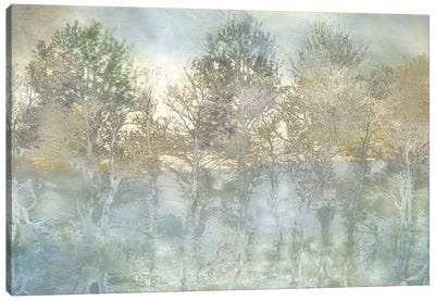 River Reflection Canvas Art Print