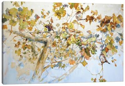 Grapes Tree Canvas Art Print