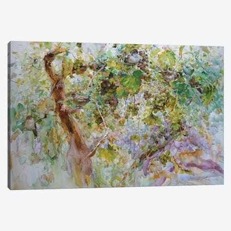 Sparrows And Grapes Canvas Print #IZH41} by Igor Zhuk Art Print