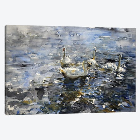 The Swan Lake Canvas Print #IZH53} by Igor Zhuk Canvas Wall Art