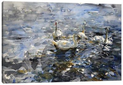 The Swan Lake Canvas Art Print