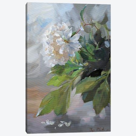 White Peonies Canvas Print #IZH58} by Igor Zhuk Canvas Artwork