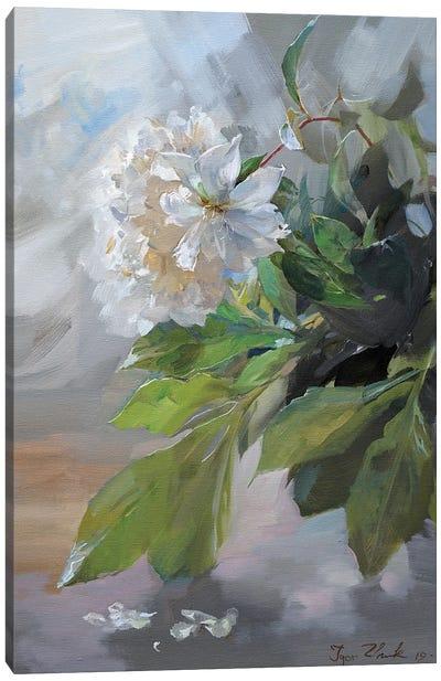 White Peonies Canvas Art Print