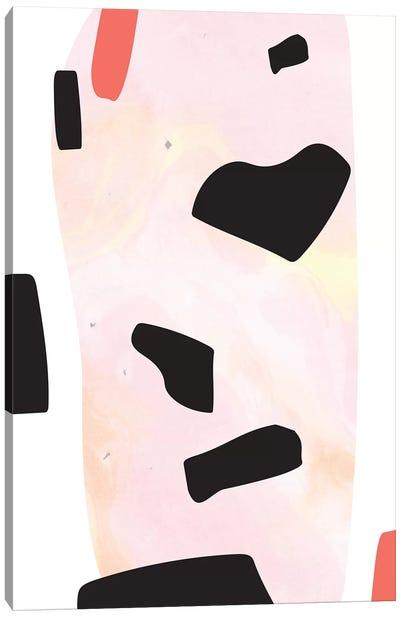 Pebbles II Canvas Art Print