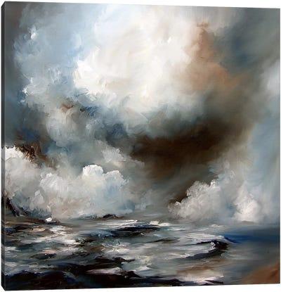 Storm Canvas Art Print