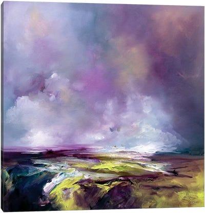 Land Beauty Canvas Art Print