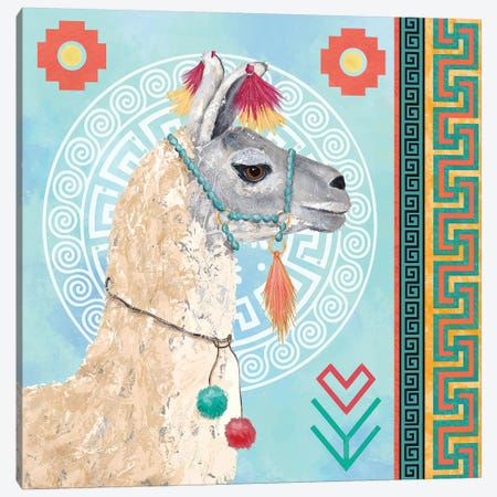 Peruvian Dreams I 3-Piece Canvas #JAD100} by Jade Reynolds Canvas Art Print