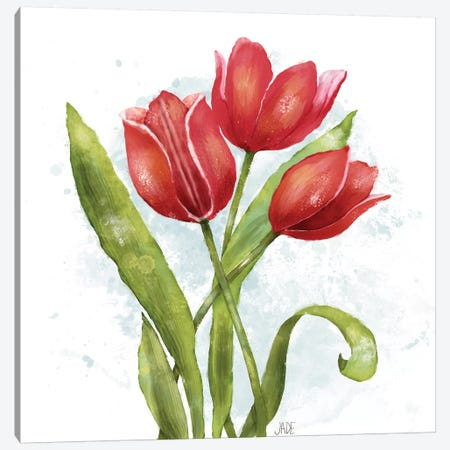 Red Tulip Splash II 3-Piece Canvas #JAD125} by Jade Reynolds Canvas Wall Art