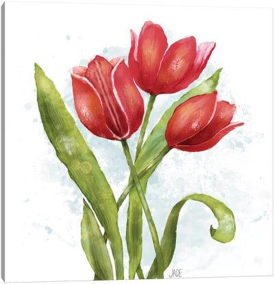 Red Tulip Splash II Canvas Art Print