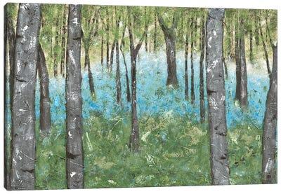 Deep Silence IV Canvas Art Print