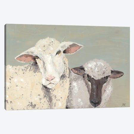 Sweet Lambs I Canvas Print #JAD17} by Jade Reynolds Canvas Art Print