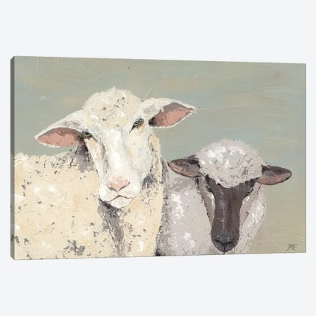 Sweet Lambs I Canvas Print #JAD17} by Jade Reynolds Canvas Art Print