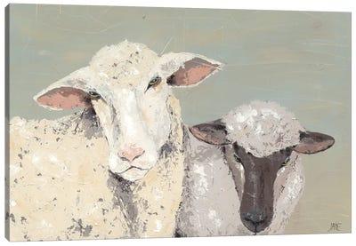 Sweet Lambs I Canvas Art Print