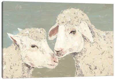 Sweet Lambs II Canvas Art Print