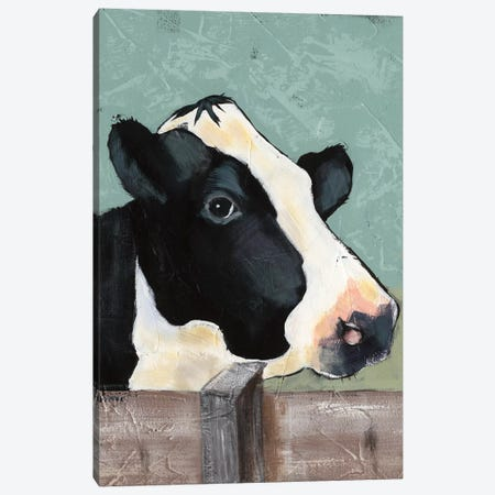 Holstein Cow I Canvas Print #JAD1} by Jade Reynolds Canvas Artwork