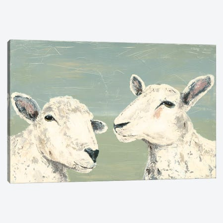 Bashful Sheep I Canvas Print #JAD25} by Jade Reynolds Canvas Art