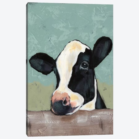Holstein Cow II Canvas Print #JAD2} by Jade Reynolds Canvas Art