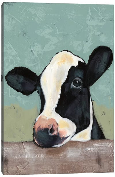 Holstein Cow II Canvas Art Print