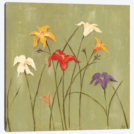 Jeweled Lilies I Canvas Print #JAD31} by Jade Reynolds Canvas Wall Art