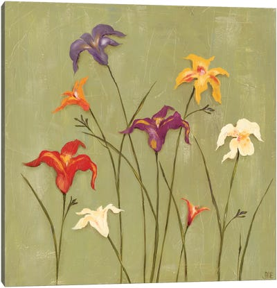 Jeweled Lilies II Canvas Art Print