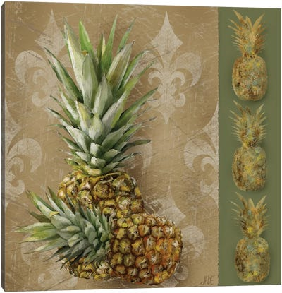 Pineapple Welcome II Canvas Art Print