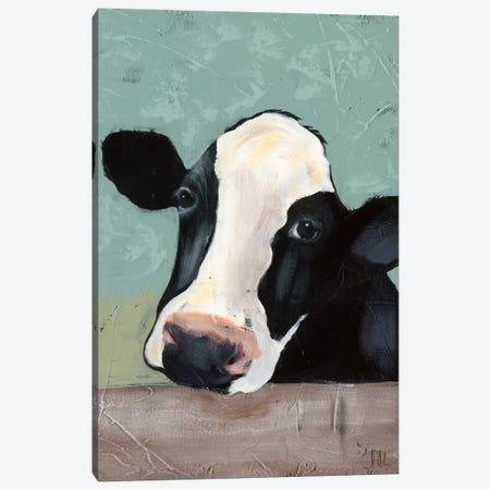 Holstein Cow III Canvas Print #JAD3} by Jade Reynolds Canvas Art