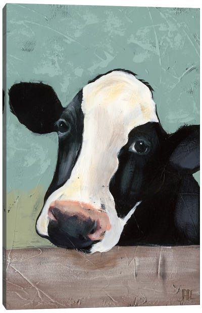 Holstein Cow III Canvas Print #JAD3