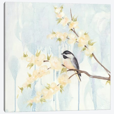 Spring Chickadees I Canvas Print #JAD4} by Jade Reynolds Canvas Print