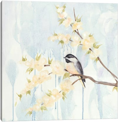 Spring Chickadees I Canvas Art Print